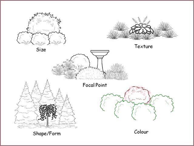 Focal Points | Gardening blog, Landscape, Landscape design
