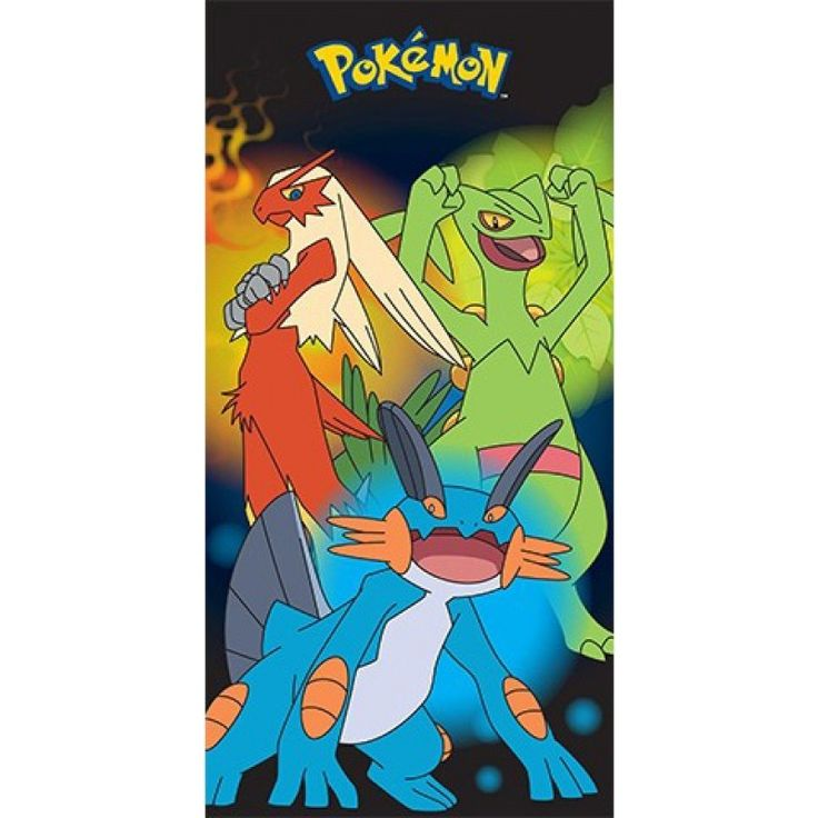 Collectables - Pokemon Beach Towel Final Evolution