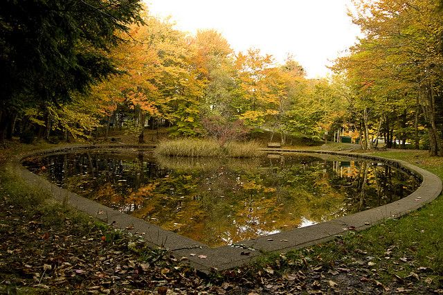 beautiful photo of the Heart Shaped Pond in Bedford, Nova Scotia, by themikestand via Flickr