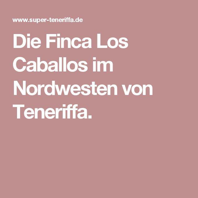 Die Finca Los Caballos im Nordwesten von Teneriffa.