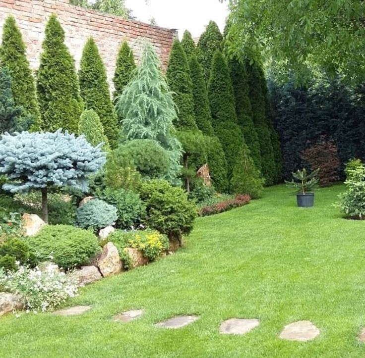 Pin By Carol Puderbaugh On Garden Ideas With Images Conifers