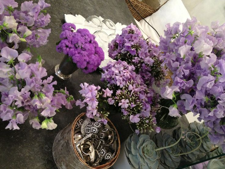 Purple flowers for the football players Fiorentina www.florencewithaview.com