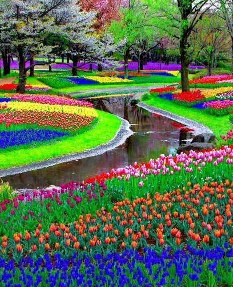 75 places so colorful it's hard to believe they're real [pics]                                                                                                                                                                                 More