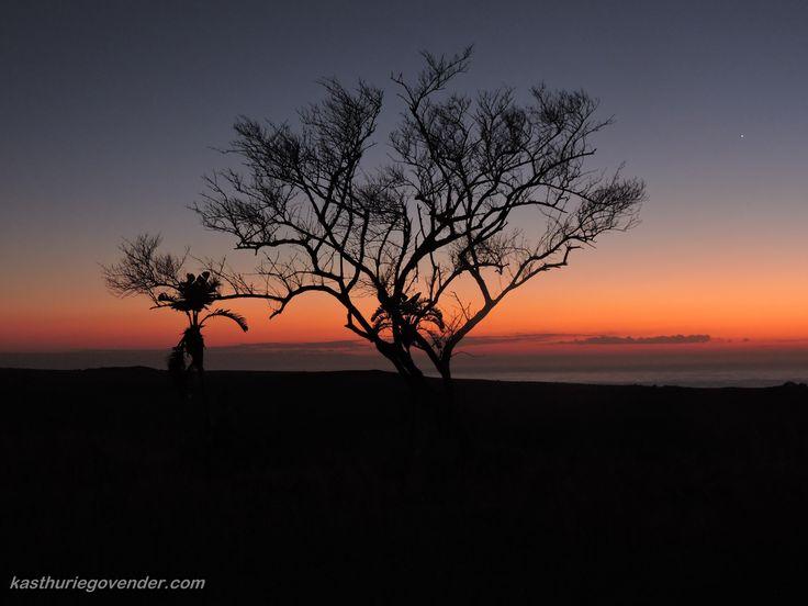Sunrise - Mkambathi Nature Reserve - South Africa