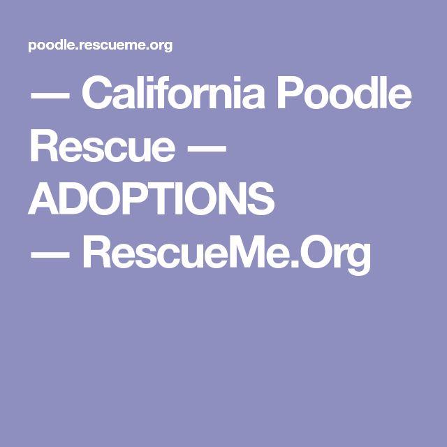 ― California Poodle Rescue ― ADOPTIONS ―RescueMe.Org