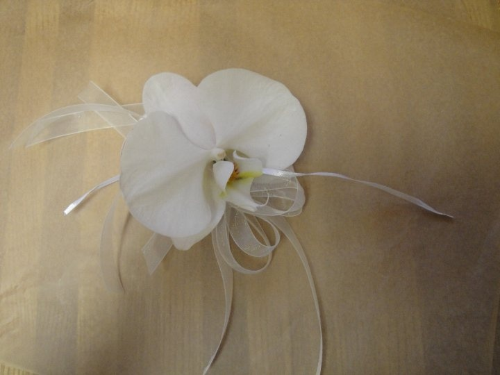 Oh so simple but elegant  phalaenopsis orchid corsage