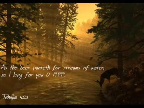 Klaas Jan Mulder Psalm 42