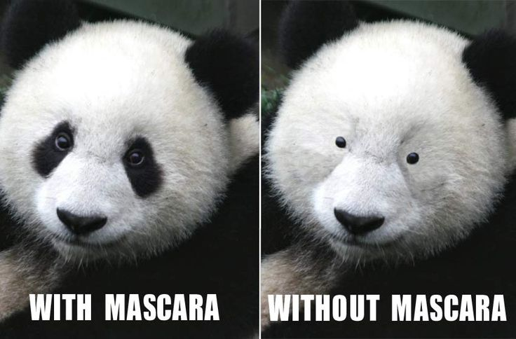 Oh my gosh, I can't leave home with out mascara, and lotion, yeah, that's me.