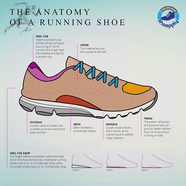 everything you ever wanted to know about running shoes in one simple chart   src: american academy of podiatric sports medicine #shoepply #jakarta  #indonesia