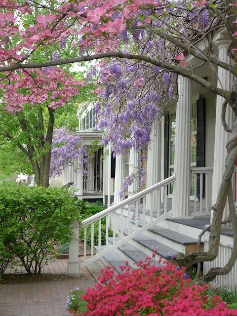 Flores en la entrada.