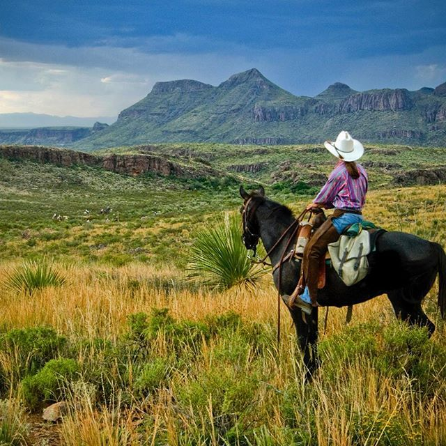 "About 80 miles west of @bigbendnps lies @bigbendranchsp, Texas' largest state park at over 300,000 acres! As the name suggests, Big Bend Ranch SP was once a working ranch, established in 1905 and augmented over the decades by a number of hard-working families who sometimes struggled in the region's unforgiving environment. In 1958 the ranch was described as ""half the size of Rhode Island!"" @texasparkswildlife acquired the property in 1988 and partially opened the park a few years later. It…"