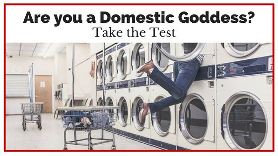 In this post a Domestic Goddess is someone who does performs all her roles perfectly which a certain flair, a Je Ne Sais Quois. I may not have the same view of the roles though... Could this be you? Do you thrive on eating cold left overs? This is the type of domestic goddess I'm talking about.