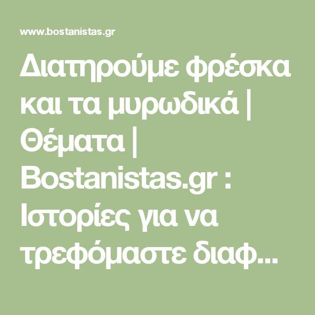Διατηρούμε φρέσκα και τα μυρωδικά | Θέματα | Bostanistas.gr : Ιστορίες για να τρεφόμαστε διαφορετικά
