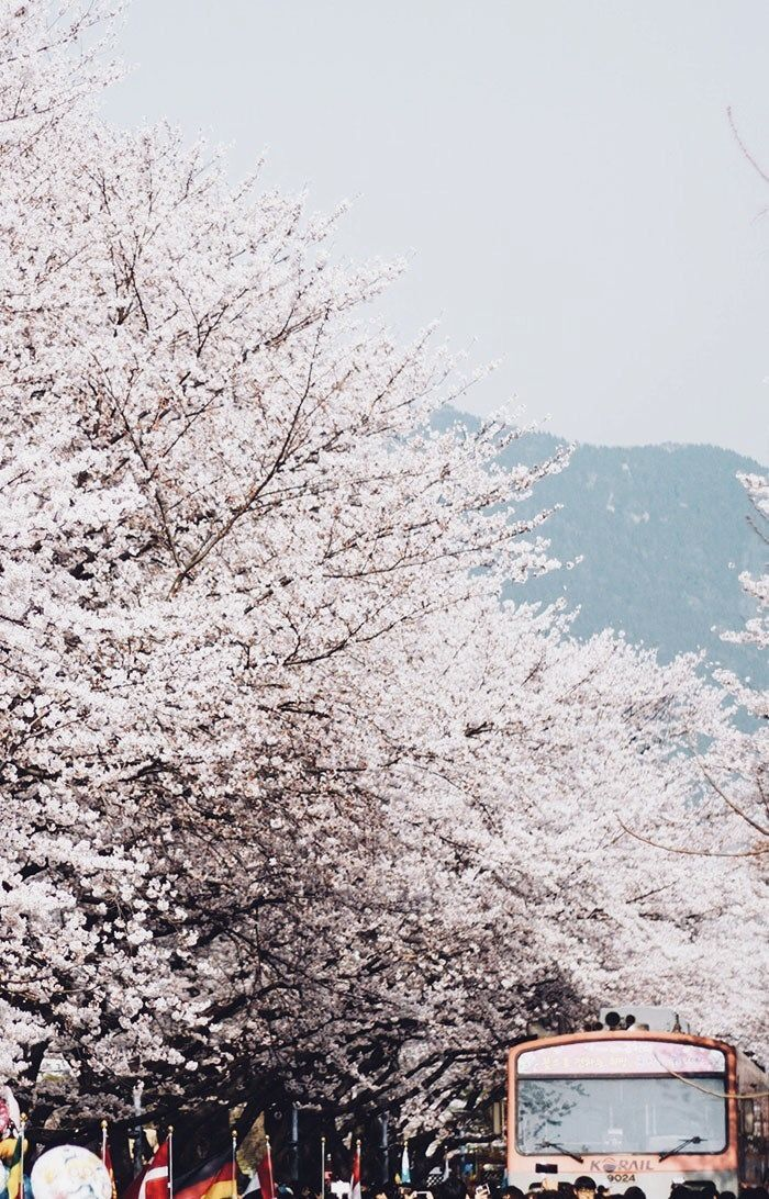 Pin By Note Ii On Corea Del Sur South Korea Photography Travel Destinations Asia Japan Korea Wallpaper