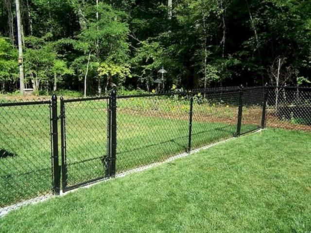 45 Simple And Cheap Privacy Fence Design Ideas Cheap Fence