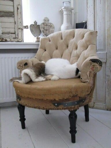 133 besten shabby bank/stoel Bilder auf Pinterest | Armlehnen ...