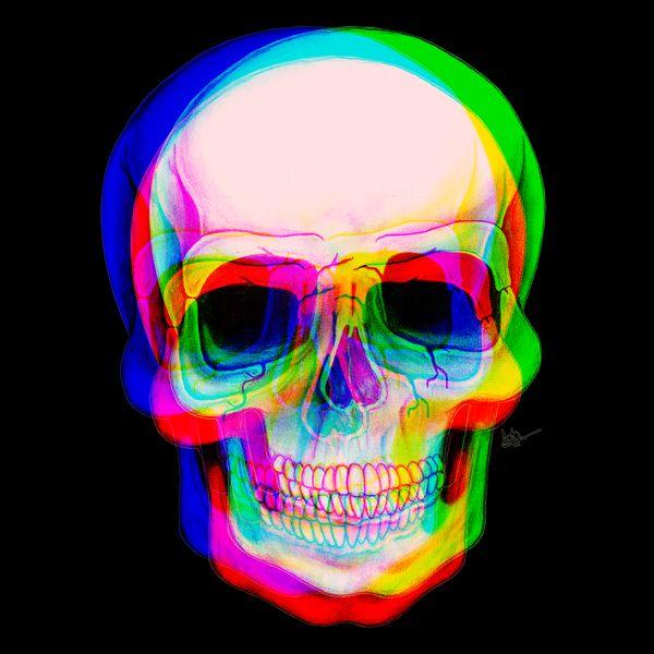 3D Illustration of Skull by Adrian Filmore