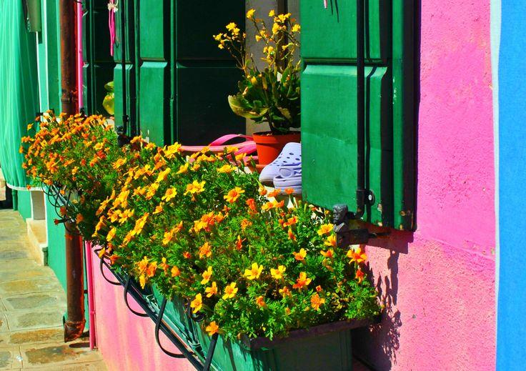 Colors Burano
