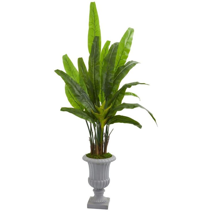 5 5 Ft Travelers Palm Artificial Tree In Gray Urn In 2020 Artificial Tree Travellers Palm Artificial Trees