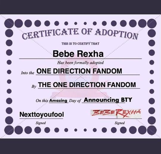 Yup.. This is happening 🙌🏼 Congratulations to you BEBE REXHA.😘 Now you're part of our 1D family. And dear Steve Aoki you're not alone darling 😉 finally they got adopted by US (DIRECTIONERS) ❤