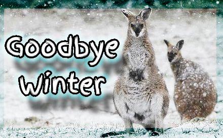 Goodbye Winter.