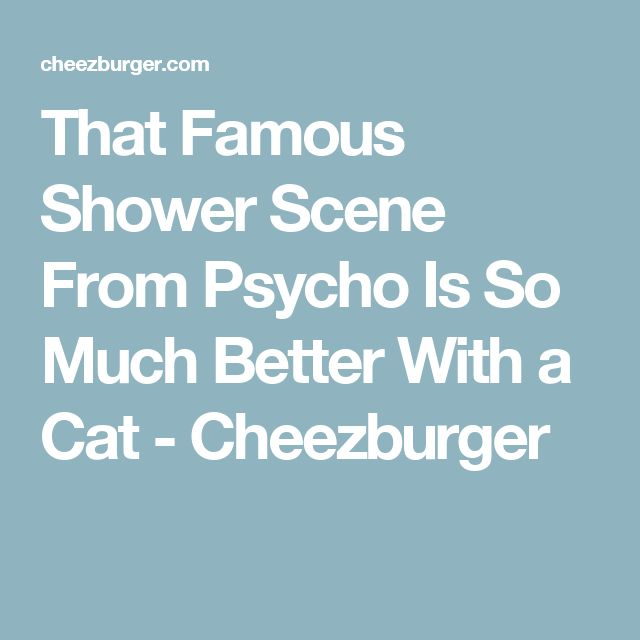 That Famous Shower Scene From Psycho Is So Much Better With a Cat - Cheezburger