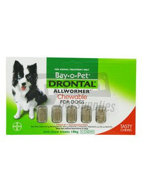 Best Allwormer For Dogs