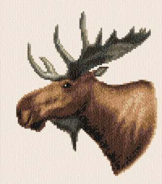Moose - cross stitch pattern designed by Marv Schier. Category: Deer.