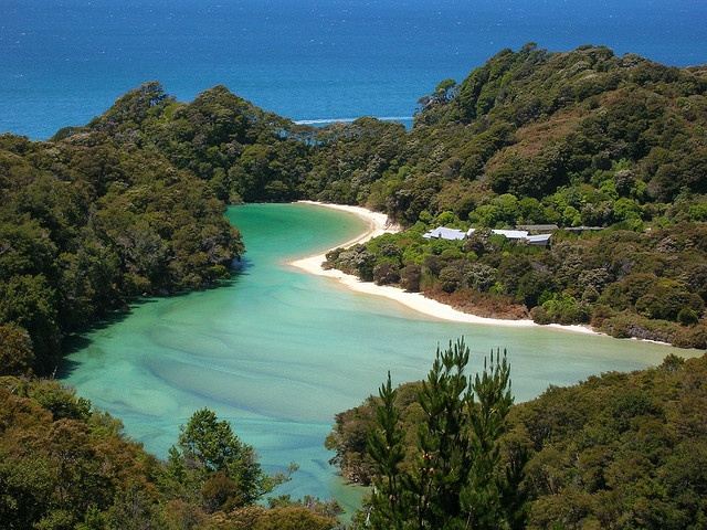 New Zealand has so many beautiful parts! I want to see all of them! This is Abel Tasman National Park.