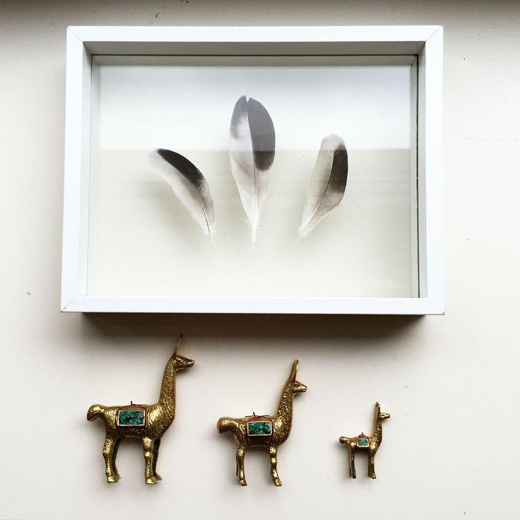 Golden lama's guarding these black/white/grey feathers flaoting in a white frame --------- Gouden lama's bewaken deze toffe zwart/wit/grijze veren zwevend in een witte lijst [by Mila's Frames]