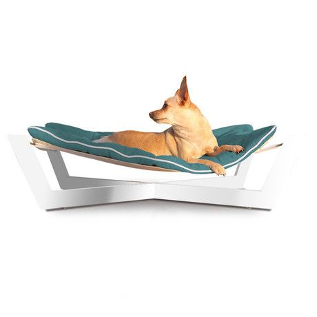 cross hammock dog bed graphite gray   contemporary   pet accessories   other metro   felix chien 305 best style dog house  u0026 products images on pinterest   cute      rh   pinterest