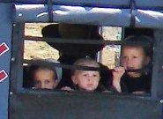 Amish kids in a buggy
