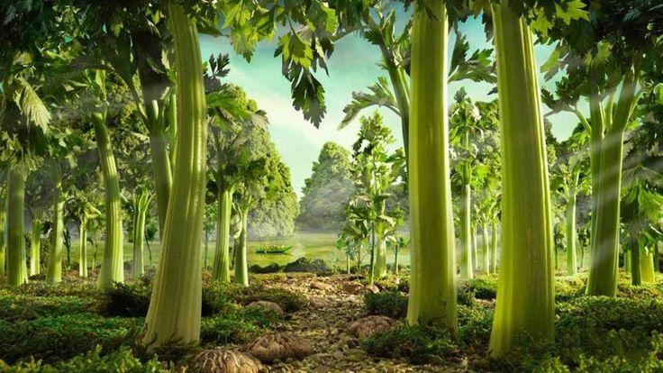 Les Foodscapes de Carl Warner