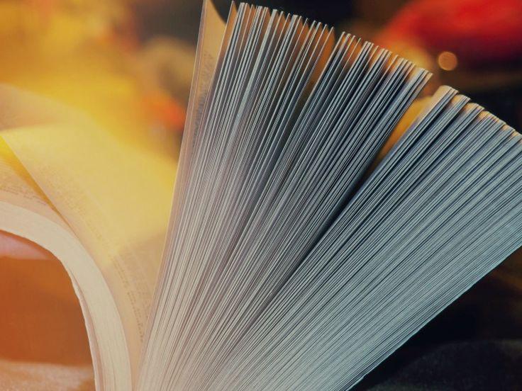 Udział w konkursach, a pisanie powieści. Pędziwiatry, czyli, czy jesteś niecierpliwą osobą? – Zostać pisarzem