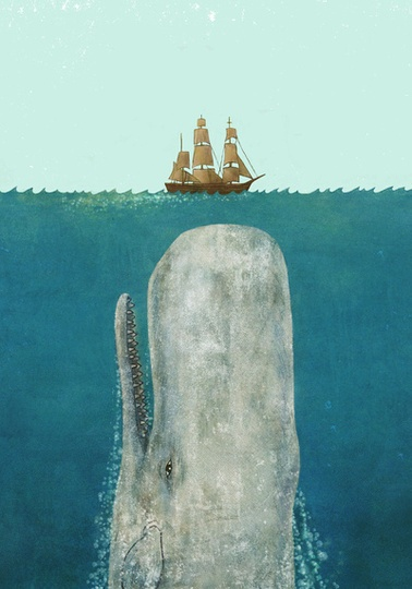 My pitch deck is the boat. My business is the whale.Terry O'Neil, Mobydick, Terry Fans, Illustration, Art Prints, Moby Dick, Products, Design, Whales