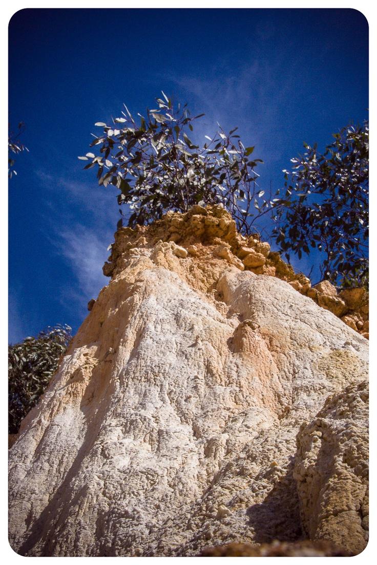 Central Australia....upwards view