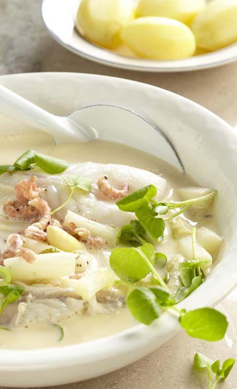 Waterzooi van staartvis met asperges en garnalen
