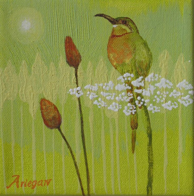 Original Bee Catcher Bird And Wild Flowers Acrylic Painting 6 by 6 on stretched Canvas by StudioAriegaw on Etsy