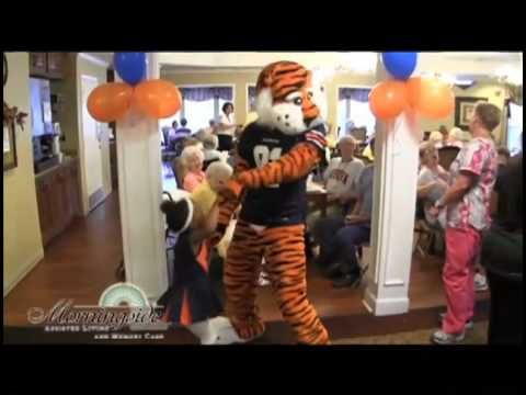 Aubie's 2012-2013 UCA National's Video. This video is dedicated to the late Phil Neel. Thank you Mr. Neel for your incredible work and for making Aubie into what he is today. Special thanks also goes to the Auburn Family for all of your support! War Eagle!!