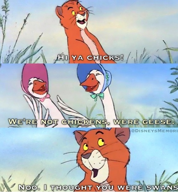 3548cbc80926caab770a3733b5696f93 disney movie quotes disney movies 273 best everybody everybody wants to be a cat images on pinterest
