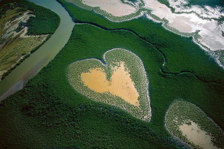 #yann_arthus_bertrand #photographer #photography #wild #nature #yellowstone #the_heart_of_voh #new_caledonia #tsavo_national park #kenya #altitude #aerial_photo #aerial_photography #parc #vue_du_ciel #noipic
