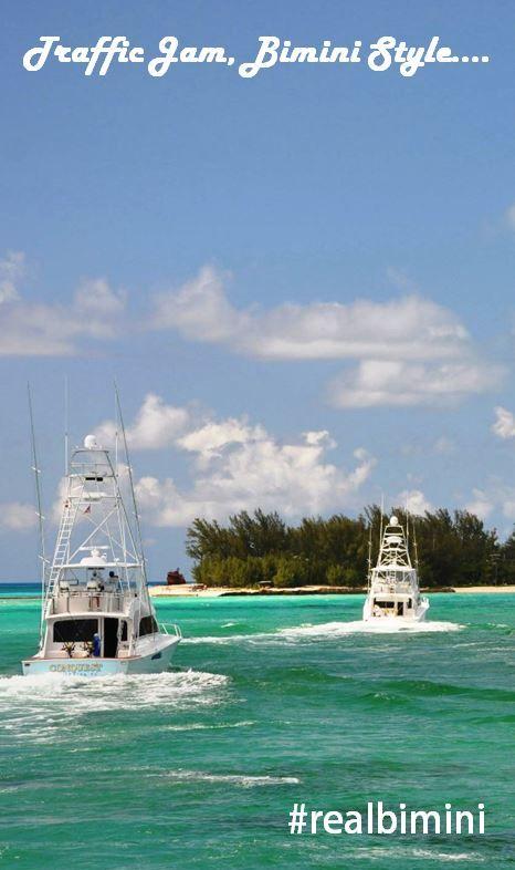 Traffic Jam, Bimini-Style. Bimini, Bahamas #realbimini