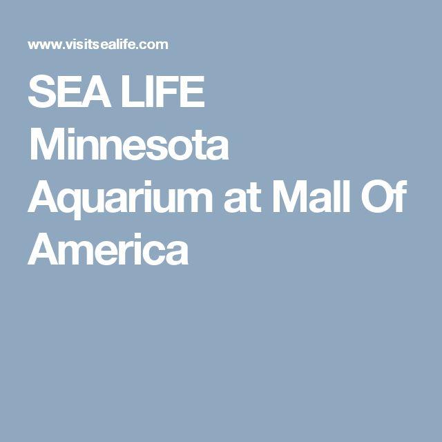SEA LIFE Minnesota Aquarium at Mall Of America