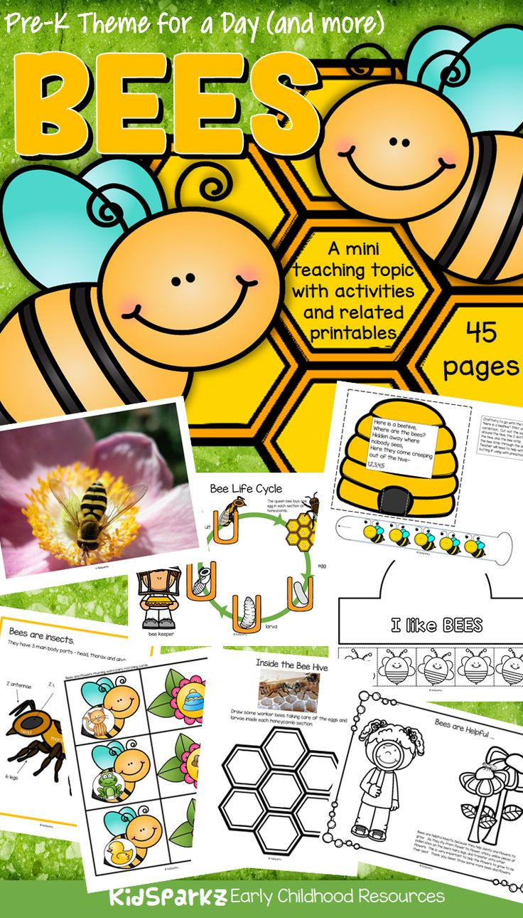 184 best bee unit images on pinterest homeschool bee and insects bees math science and literacy centers and activities for preschool pre k robcynllc Image collections