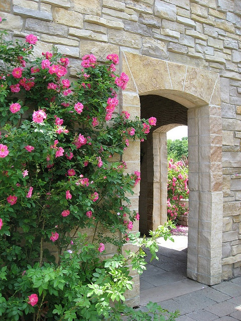17 Best Images About Gardens 3 Pinks Rosy Reds On Pinterest Gardens English Cottage