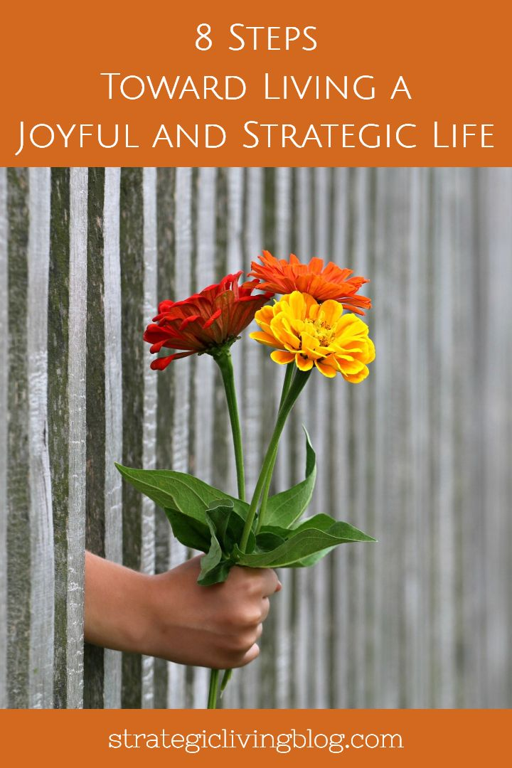 Road Map Of Project%0A   Steps Toward Living a Joyful and Strategic Life