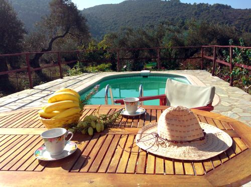A country house 2Km from Skopelos town. With swimmung pool fireplace AC  free Wifi Sat Tv  full equiped kitchen 2 Bedrooms Living room parking ...
