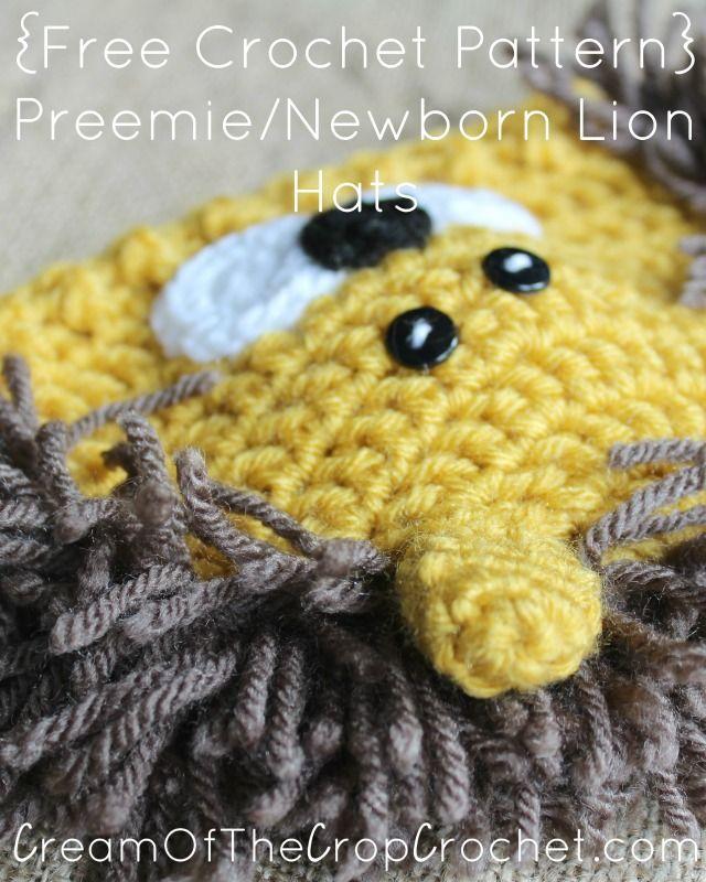 Atractivo Crochet Patrón De Sombrero De León Colección de Imágenes ...