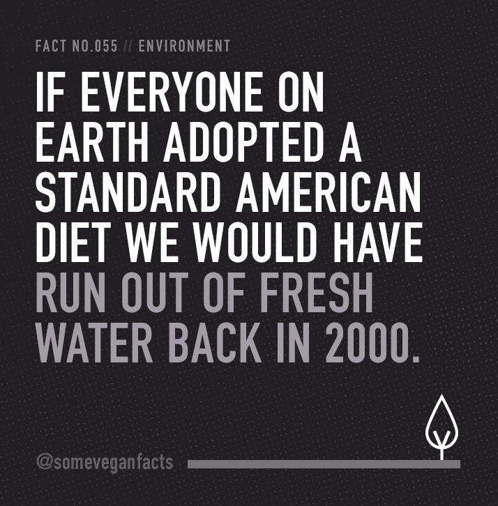 If everyone on Earth adopted a standard American diet we would have run out of fresh water back in 2000. #sustainability #vegan #govegan