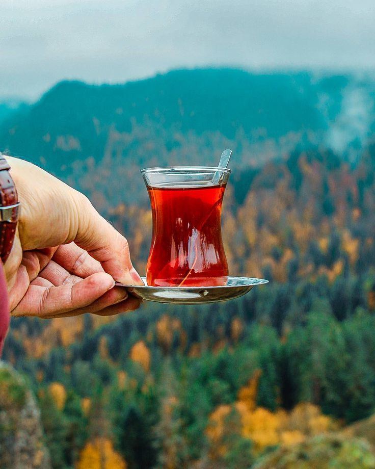 Turkish tea~~  Yedigoller National Park, Bolu, Turkey - Photo by Ömer Erul (@omerull)